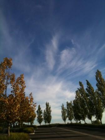 101118_sky.jpg