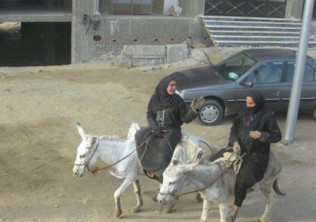 101229_riding-donkey.jpg