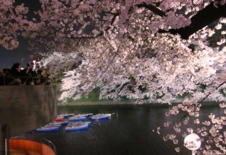 JAPAN3月 080