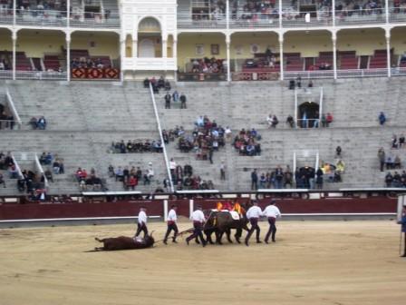 DAY 3 MADRID 079