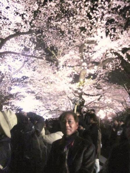 JAPAN3月 071