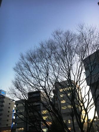 IMG_3968.JPG7
