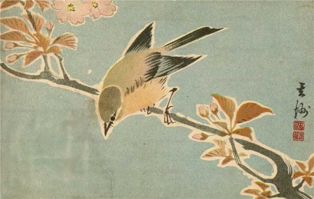 kfg745-桜と鶯